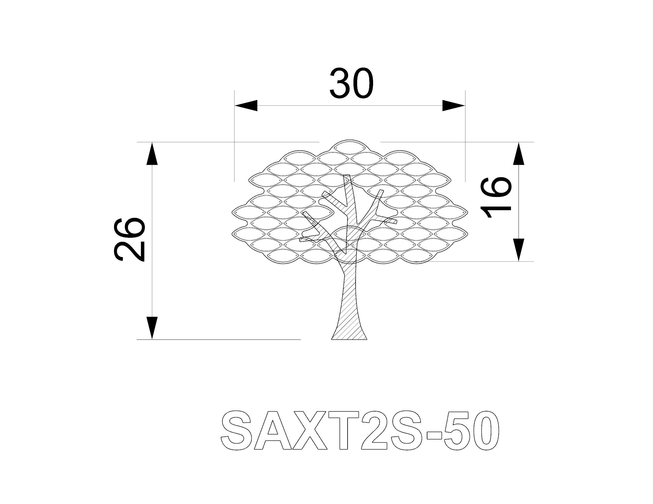 SAXT2S-50.jpg