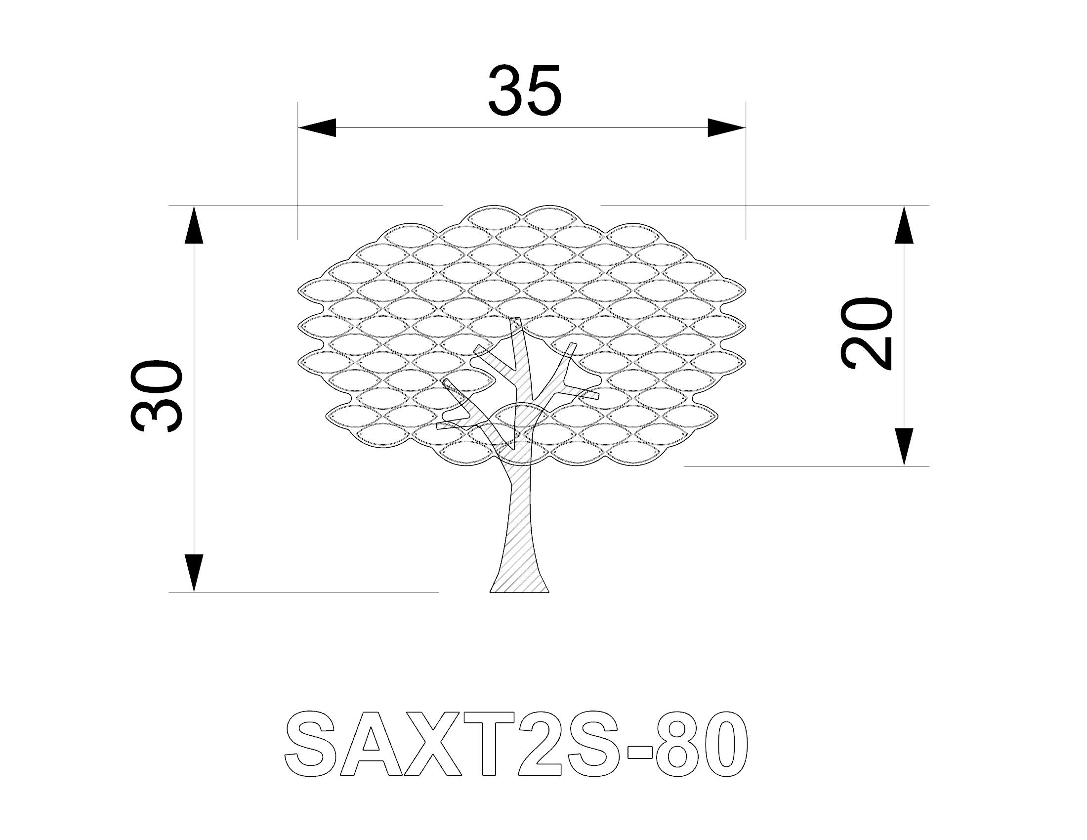 SAXT2S-80.jpg